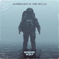 Astronaut In The Ocean tiktok