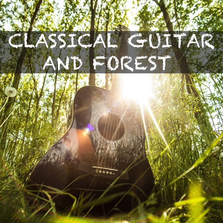 Dream Guitar and Forest #7